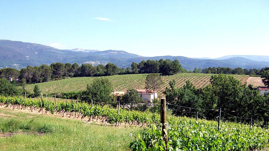 domaine-viticulture-diapo5